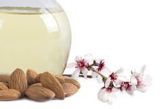 Almond oil and almonds with flowers Royalty Free Stock Photo