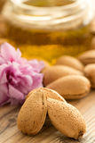 Almond oil and almonds, selective focus Royalty Free Stock Photography
