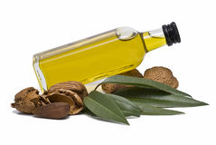Almond oil bottle lying. Royalty Free Stock Image