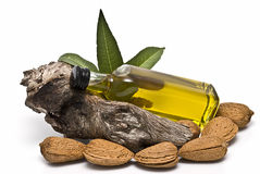 Almond oil bottle lying on a branch. Royalty Free Stock Photos
