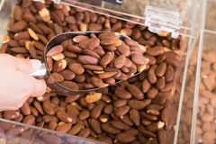 Almond pile shop Royalty Free Stock Images