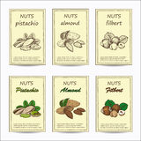 Almond, pistachio, filbert. Hand drawn nuts sale tag banners. Vintage color design with almond, pistachio, filbert illustration. Set of vector sketches Royalty Free Stock Images