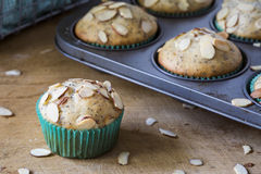 Almond poppyseed muffin in blue wrapping with muffin tin Stock Photos
