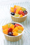 Almond Pudding with Fruits on top Stock Photography