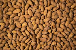 Almond seeds as food background Stock Image