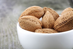 Almond in Shell - close-up Stock Photography