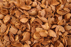 Almond shells background Stock Photos