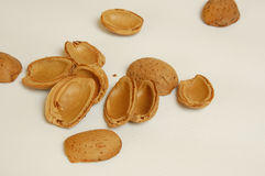 Almond shells Stock Photography