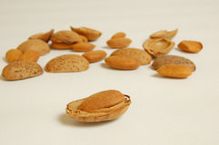 Almond with shells Stock Photo