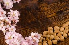 Almond still life Stock Photo