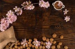 Almond still life Stock Image