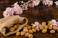Almond still life Royalty Free Stock Image