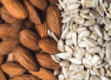 Almond and sunflower healthy seeds background Royalty Free Stock Photography