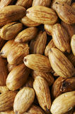 Almond texture Royalty Free Stock Photos