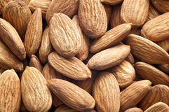 Almond Texture Background Stock Image