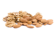 Almond and walnut. On the white background Stock Images