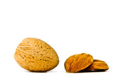 Almond on a white background Stock Images