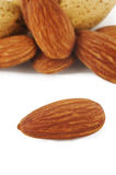 Almond on white background Stock Photography