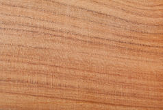 Almond wood texture Royalty Free Stock Images