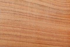 Almond wood texture. Close up of Almond-Badam (Terminalia Procern) wood texture Royalty Free Stock Images