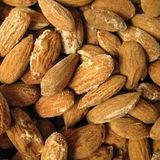 Almonds. The Almond or Cork Nut (Prunus dulcis) is a species of Prunus. Botanically, the almond is not a nut, despite common usage royalty free stock image