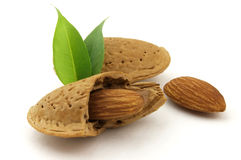 Almonds. With leaves on a white background royalty free stock photo