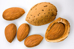 Almonds. Italian almonds - dried fruit for mediterranean alimentation Royalty Free Stock Photos