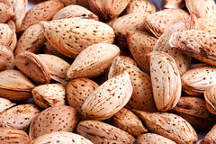 Almonds. On white background. Close-up Stock Photo