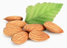 Almonds. Ripe almonds on white background Royalty Free Stock Images
