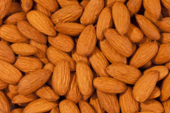 Almonds. High resolution of almonds taken with a macro lens Royalty Free Stock Images