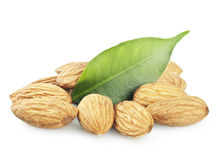 Almonds Stock Image