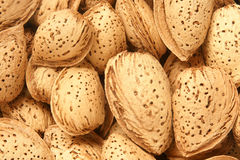 Almonds. For backgrounds or textures Royalty Free Stock Photography