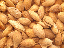 Almonds. Royalty Free Stock Images