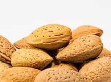 Free Almonds Royalty Free Stock Photos - 47523278