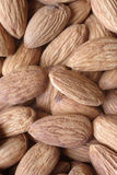Almonds. Nuts royalty free stock image