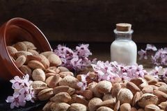 Almonds, almond flowers and almond milk stock image