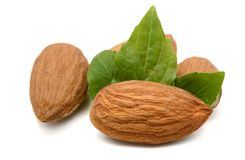 Almonds. Almond with green leaf isolated on white background Stock Image