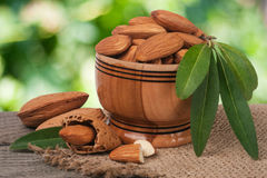 Almonds in a bowl on the old wooden board with sackcloth and blurred garden background Royalty Free Stock Image