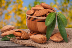 Almonds in a bowl on the old wooden board with sackcloth and blurred garden background Stock Images