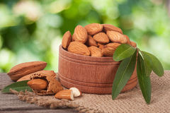 Almonds in a bowl on the old wooden board with sackcloth and blurred garden background Royalty Free Stock Photo