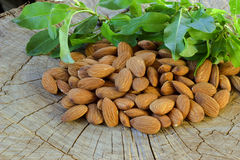 Almonds. Royalty Free Stock Photography