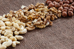 Almonds, cashew, walnuts and hazelnuts Stock Photography