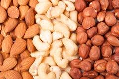 Almonds cashews and hazelnuts peeled as background Royalty Free Stock Photo