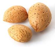 Almonds in closeup Stock Photo