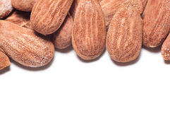 Almonds with copyspace. Group of almonds on a white background with copyspace below Royalty Free Stock Image
