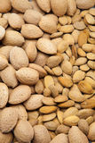 Almonds with crust Royalty Free Stock Image