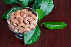 Almonds. Dessert bowl full of almonds and green leaves Stock Image