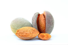 Almonds in 4 steps. Evolution of an almond in four steps from the fruit to the pit Royalty Free Stock Photo