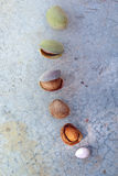 Almonds. Evolution of an almond in six steps from the fruit to the pit Stock Image