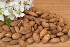 Almonds, flowering almonds. Royalty Free Stock Image